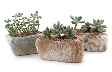 Set of 3 natural stone shaped succulent and cactus pots sandstone and slate colored.