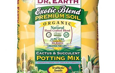 The best cactus and succulent soil blend is Dr. Earth 810 Exotic Cactus & Succulent Soil Potting Mix.