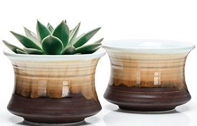 Set of 2 Glazed Ceramic Succulent Plant Pots - Planters