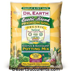 The best succulent soil is Dr. Earth Cactus & Succulent Potting Mix