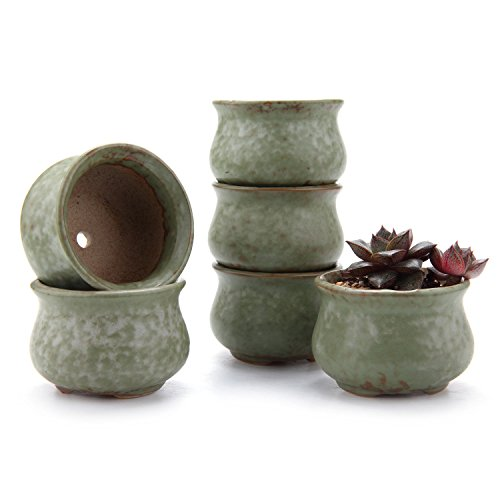 "Cute Ceramic Succulent Pots – Set of Six – 2.75"" Wide"