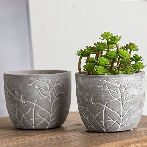 Bird & Branches Etched Clay Succulent Pot